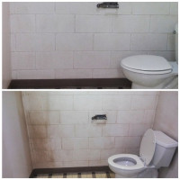 Bio-One Cleans Walls